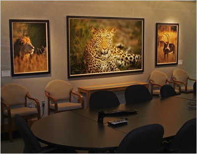 Many of Brian Hampton's images decorate the lobby, hallways, and meeting rooms of the corporate headquarters of Cleo Communications, where Hampton is the CEO. Read more in LexJet's In Focus newsletter Vol. 2, No. 11