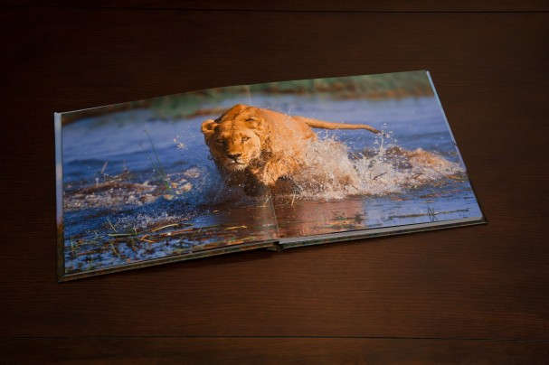 Limited edition coffee table book