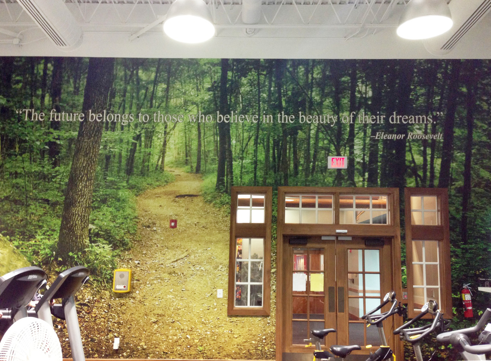 Nature Wallpaper Murals Bass Pro Wall mural w text