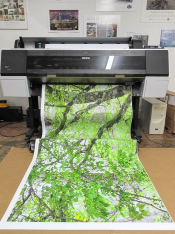 Printing LexJet Fabric on an Epson 9900 Inkjet printer