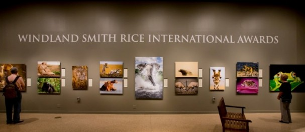 Smithsonian Exhibition of the Windland Smith Rice International Awards
