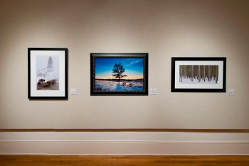 Exhibition by Visio Photography