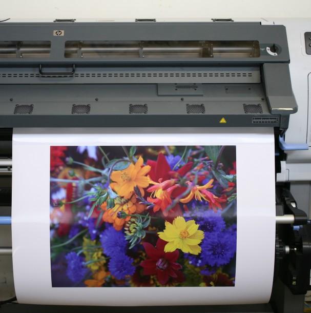 Avant Printing Decor