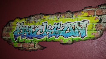 Printed Wall Graffiti by Clear Lake Press