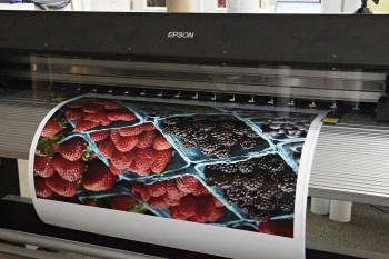 Epson SureColor Printers