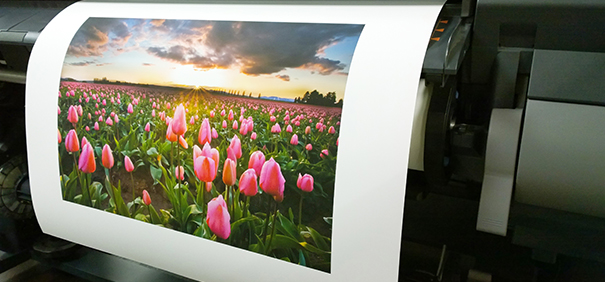 Sunset Photo Matte Paper: Durable, High-Quality, Archival and Economical
