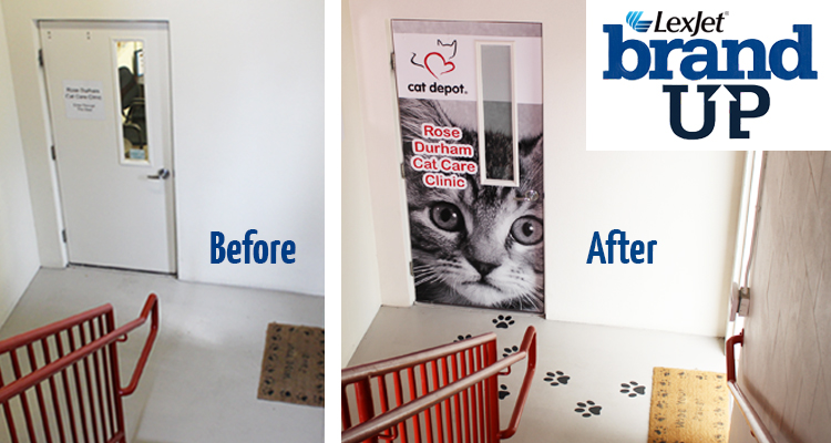 LexJet brandUP: Cat Depot Redux