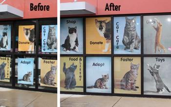 b-a Cat Depot window graphics