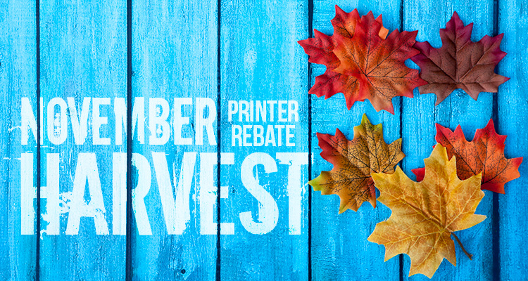 Save a Bundle with November Printer Rebate Deals