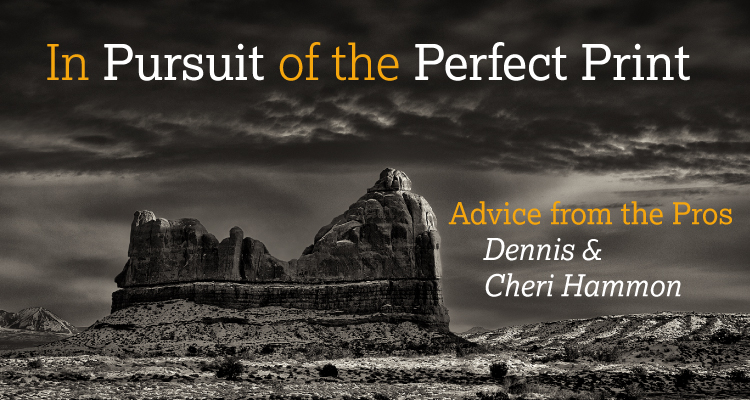 Dennis and Cheri Hammon: In Pursuit of the Perfect Print